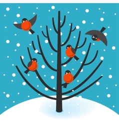 Stock bullfinch on tree vector image