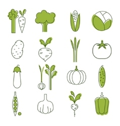 Simple vegetable set handdrawn vector