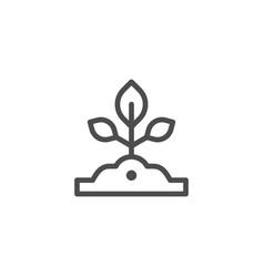 Sapling line icon vector