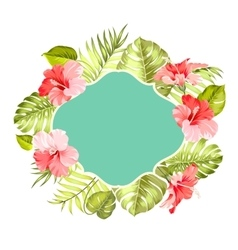 Tropical flower frame vector