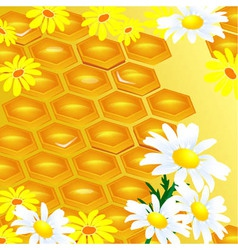 Design of honeycomb and flowers vector