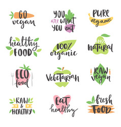 Hand drawn style set of bio organic eco healthy vector
