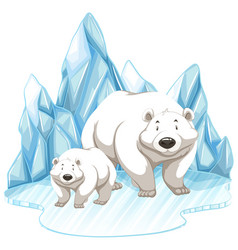 Two polar bears on iceberg vector