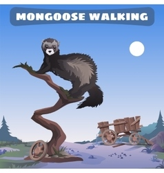 Mongoose walking through the wild west vector