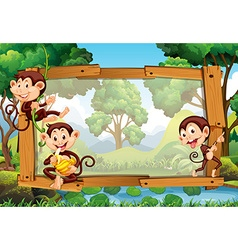 Frame design with monkeys in jungle vector