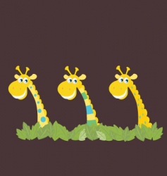 three african safari giraffes vector image