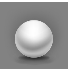 simple white sphere vector image