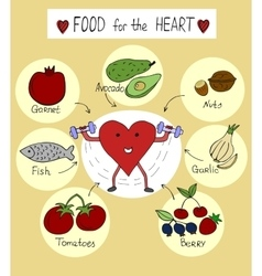Proper nutrition for a healthy heart vector