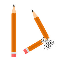 two pencil image vector image