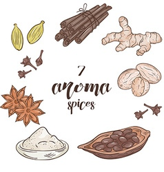 Set of 6 isolated cartoon hand drawn aroma spices vector