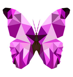butterfly poly vector image vector image