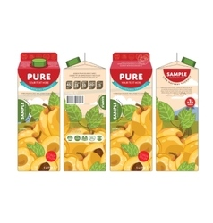 Template packaging design apricot juice vector
