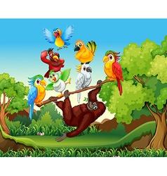 Wild birds and urangutan in the forest vector image
