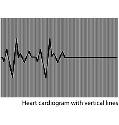 black heart cardiogram on the background vector image
