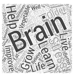 The Brain and Healthy Aging Word Cloud Concept vector image