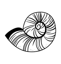 snail shell isolated icon vector image