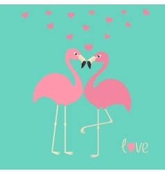 Pink flamingo couple and hearts exotic tropical vector