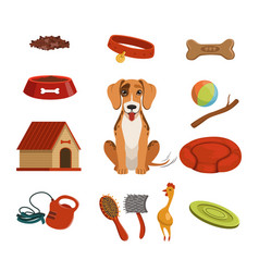 Different accessories for domestic pet dog in vector