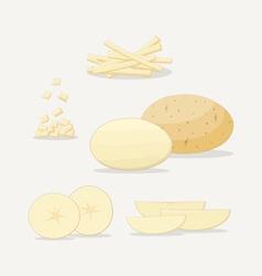 Potato Flat Icon vector image