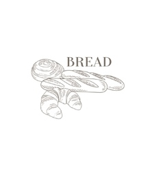 Baguette croissant and swirl hand drawn realistic vector