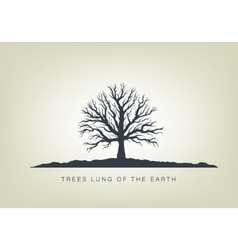 a tree in the garden ecology vector image vector image