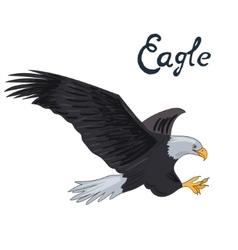 Bird eagle vector