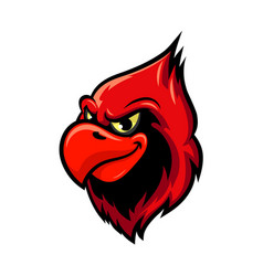 cardinal bird cartoon mascot design vector image vector image