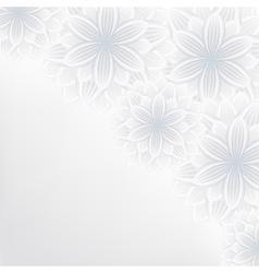 Lace floral background with flower pattern vector image