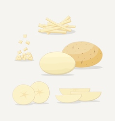 Potato Flat Icon vector image vector image