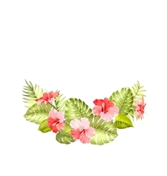 Tropical flower of hibiscus vector image