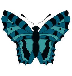 blue butterfly drawing by vector image vector image