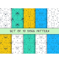 Set of 10 seamless patterns with different breeds vector