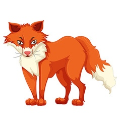 Fox with red fur vector