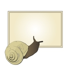 Cute snail looks into a text box vector