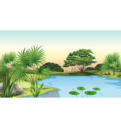 Green plants surrounding the pond vector