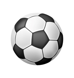 Isolated Realistic Soccer Ball vector image vector image