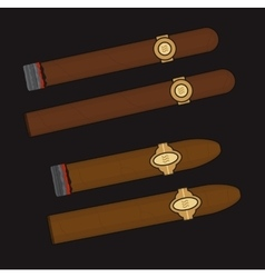 Burning cigars set vector