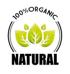 Organic and natural product vector