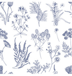 botanical seamless pattern with meadow herbs vector image vector image