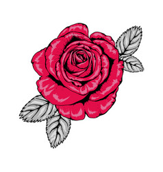 Tattoo style red rose with black outlines v3 vector
