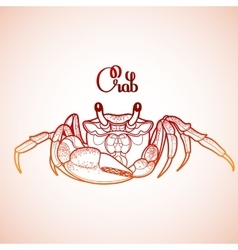 Graphic crab vector image