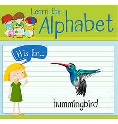 Flashcard letter h is for hummingbird vector