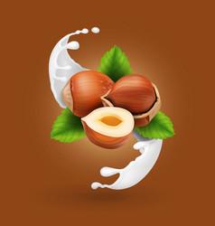hazelnuts in milk splash realistic nut in yogurt vector image vector image