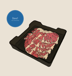Raw beef meat sliced in tray vector