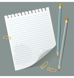 Torn Out Page And Pencils vector image