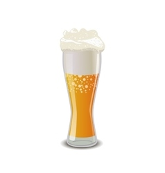 Glass of light beer with foam isolated on white vector image