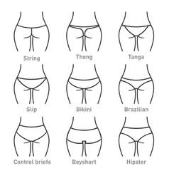 Woman underwear panties types vector