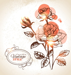 Vintage hand drawn floral background with rose vector image