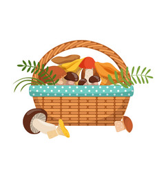 Different fresh mushrooms in basket vector