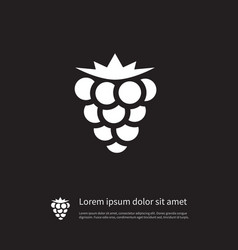 isolated blackberry icon bramble element vector image vector image